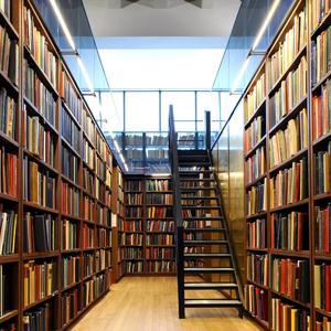 Библиотеки Грязей